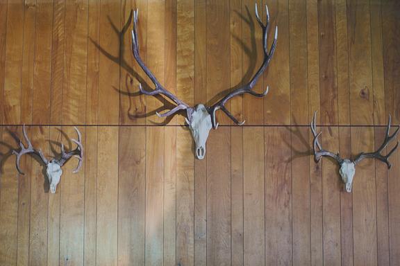 triple-mount