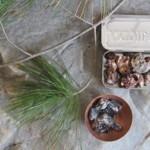 How To Make Pine Resin Glue
