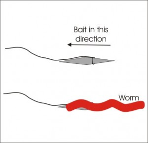 How to Bait a Primitive Fishing Gouge