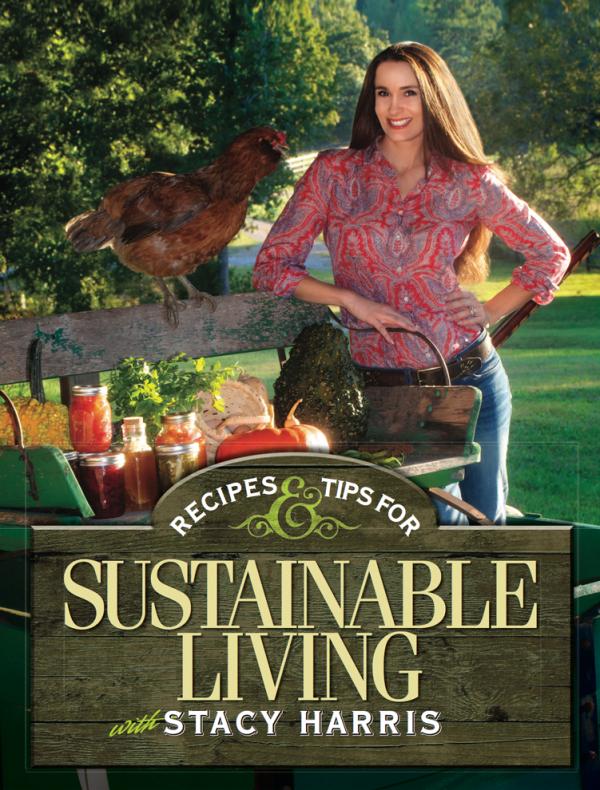 sustainable-600x790