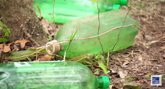 2-liter-trash